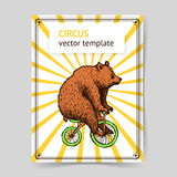Sketch bear on a bike in vintage style Stock Photo