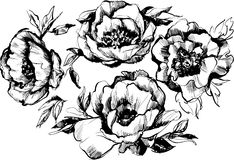 Sketch of a beautiful wreath of flowers peonies Stock Image