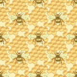 Sketch bee and honey cells in vintage style Royalty Free Stock Photography