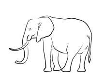 Sketch of a big elephant. Stock Image