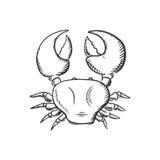 Sketch of big ocean crab Stock Image