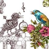 Sketch of bird Stock Images