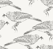 Sketch of bird Royalty Free Stock Photo