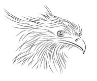 Sketch of bird. Royalty Free Stock Images