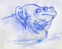 Sketch of a blue frog. Hand drawn pencil sketch of a blue frog seated on a stone near the water with water lily leaves floating on the surface Stock Images
