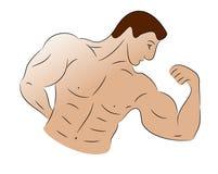 Sketch of a Bodybuilder Royalty Free Stock Photos