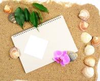 Sketch-book und Shells und Orchidee Stockbilder