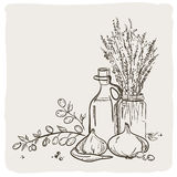 Sketch bottle of olive oil. Royalty Free Stock Images