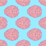 Sketch brain in vintage style Stock Photography