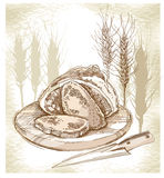 Sketch of bread and spikes. Stock Photo