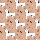 Sketch bullterrier seamless pattern Stock Images
