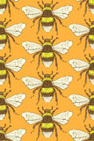 Sketch bumble bee in vintage style stock illustration