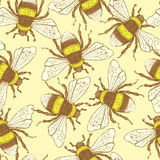 Sketch bumble bee in vintage style Royalty Free Stock Images
