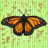 Sketch butterfly, vector vintage background Royalty Free Stock Images