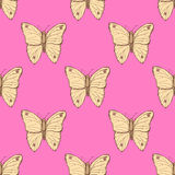 Sketch butterfly  in vintage style Stock Photography