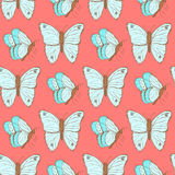 Sketch butterfly  in vintage style Royalty Free Stock Images