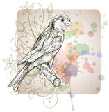 Sketch of a canary bird sitting on a branch. & floral calligraphy ornament - a stylized orchid,  color paint background Stock Image