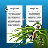 Sketch card with space for text and fish zanclus cornutus. A sample of the poster, invitation or other cards. Vector. Sketch card with space for text and fish vector illustration