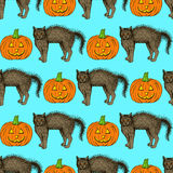 Sketch cat and pumpkin Royalty Free Stock Images