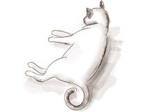 Sketch of a cat Royalty Free Stock Photo