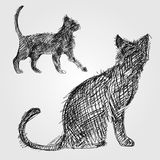 Sketch cat. Vector outline sketch if a cat standing Royalty Free Stock Image