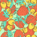 Sketch cherry and strawberry Stock Photo