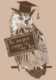Sketch of clever owl on a branch with message board Royalty Free Stock Photo