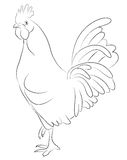 Sketch of a Cock. Isolated on white Royalty Free Stock Photography