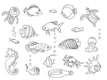 Sketch collection of marine inhabitants. Coloring book page. Kids style, hands drawing, black and wight Stock Photography