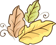 Sketch of color leaves Royalty Free Stock Images