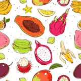 Sketch Colored Exotic Fruits Seamless Pattern Royalty Free Stock Photos
