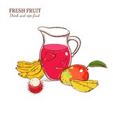 Sketch Colored Fresh Drink Concept Royalty Free Stock Photography