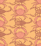 Sketch crab and scorpion in vintage style Royalty Free Stock Photography