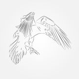 Sketch of Crow in Vector Stock Images