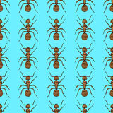Sketch cute ant in vintage style Stock Images