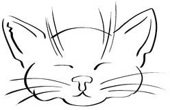 Sketch of a cute cat face isolated Stock Photography