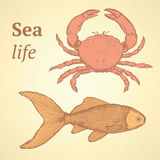 Sketch cute crab and fish  in vintage style Royalty Free Stock Photography