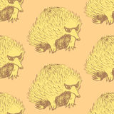 Sketch cute echidna in vintage style Royalty Free Stock Photography