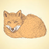 Sketch cute fox in vintage style Stock Images