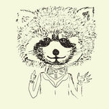 Sketch of cute funny raccoon Royalty Free Stock Image