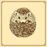 Sketch cute hedgehog in vintage style Royalty Free Stock Images