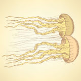 Sketch cute jellyfish in vintage style Stock Image