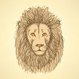 Sketch cute lion in vintage style Royalty Free Stock Images