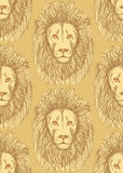 Sketch cute lion in vintage style Stock Photography