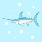 Sketch cute swordfish in vintage style Stock Image