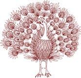 Sketch of a decorative peacock Royalty Free Stock Photos