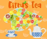 Sketch design with kettle, cup and slices of citrus in color. Vector illustration. Assorted citrus slices on a colored background with a teapot, a cup and an Royalty Free Stock Photography