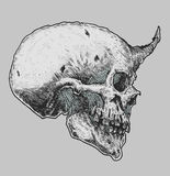 Sketch of Devil Skull Royalty Free Stock Photography