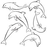 Sketch of dolphins set Royalty Free Stock Photo