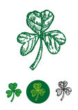Sketch doodle artwork of the Shamrock leaf used as a symbol in St Patricks Day. Editable Clip Art. Stock Images